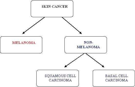 Types_of_Skin_cancer_flowchart.jpg